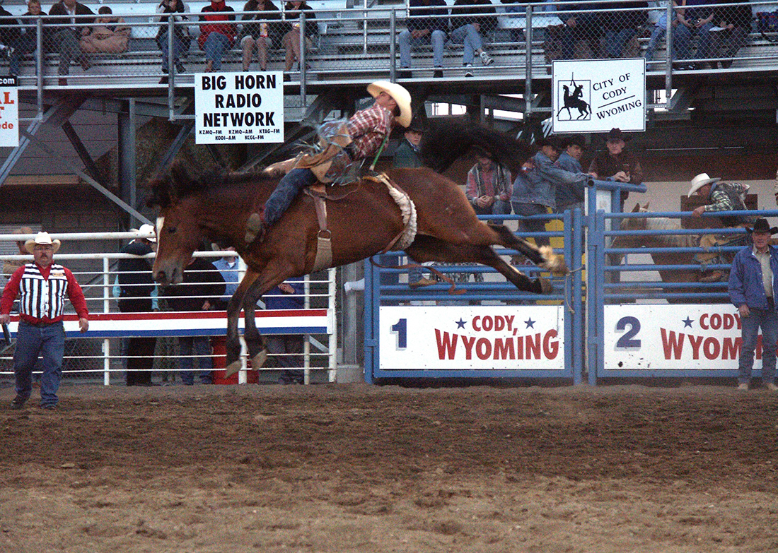 A rodeo rider tries to control a bucking bronco in Cody, Wyoming.