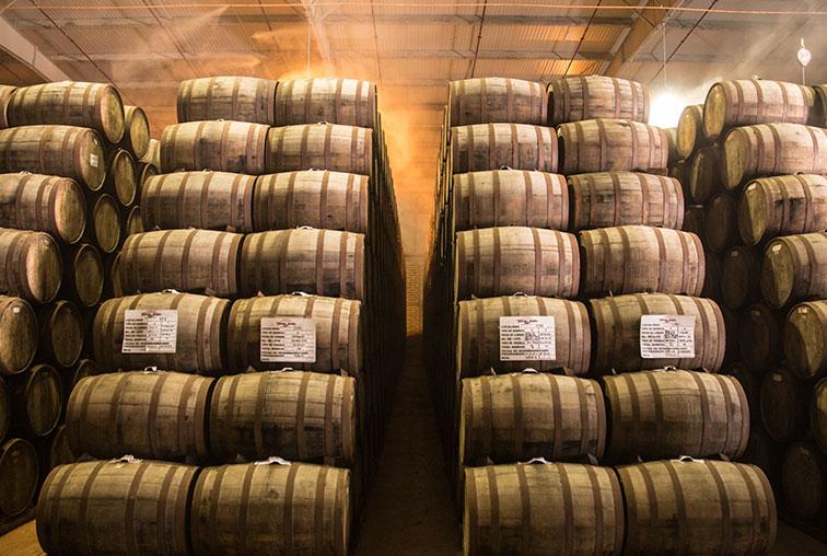 Tequila barrels ready for market.