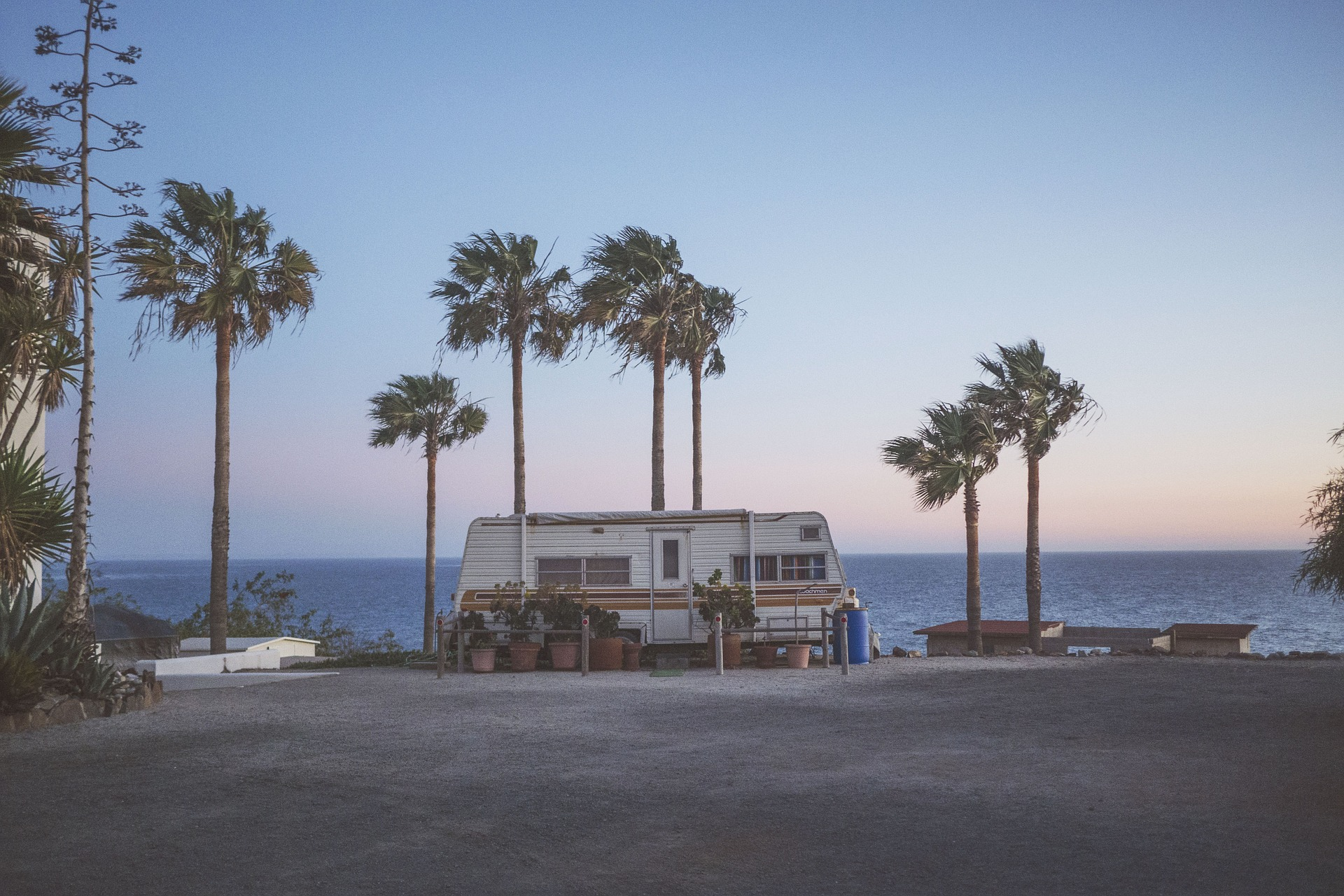 Palm trees bend over a camping trailer on a windy day along the coast.