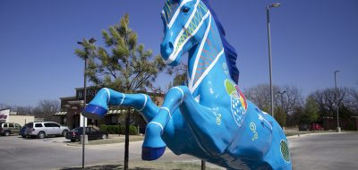 Blue painted horse of Shawnee, Oklahoma