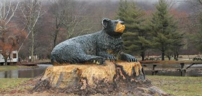 Black bear carving on wooden stump