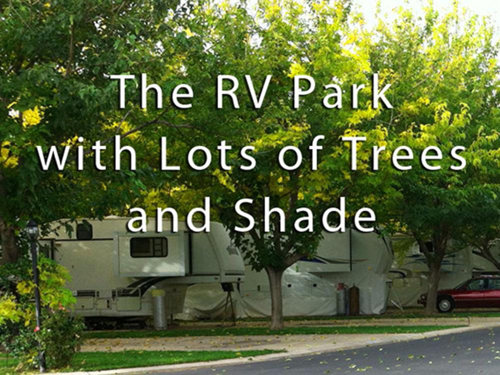Trees cast abundant shade over RVs at campsites.