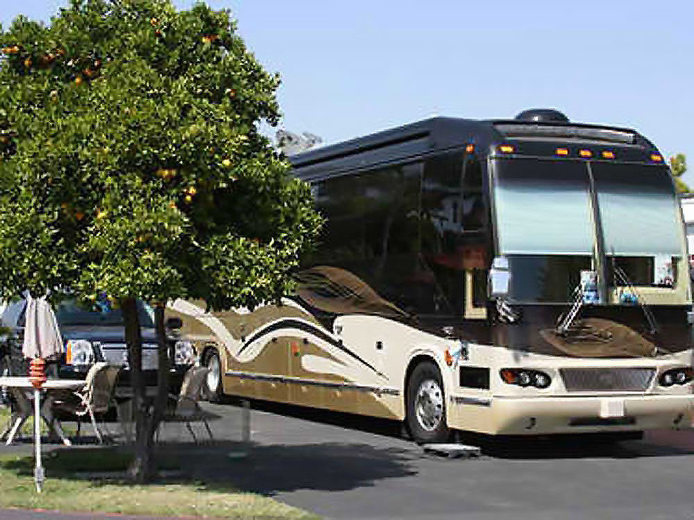 Brown, tan and beige motorhome parked next to trees