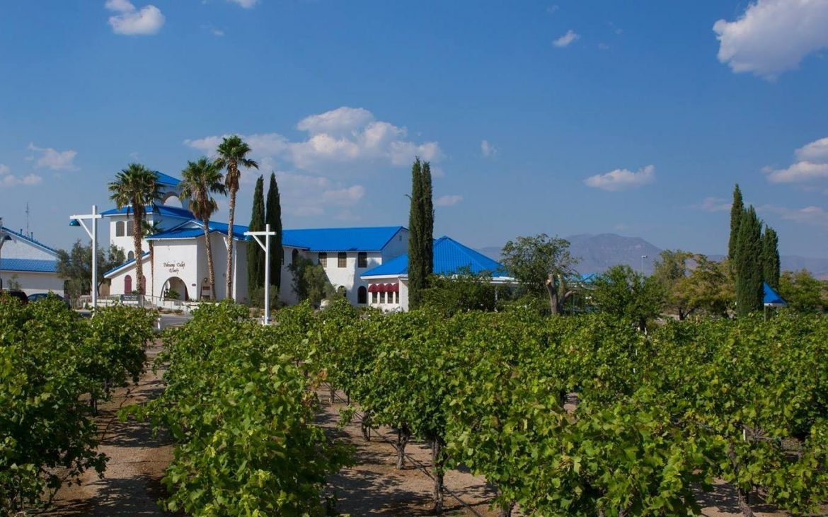 Winery building with blue roof behind vineyards