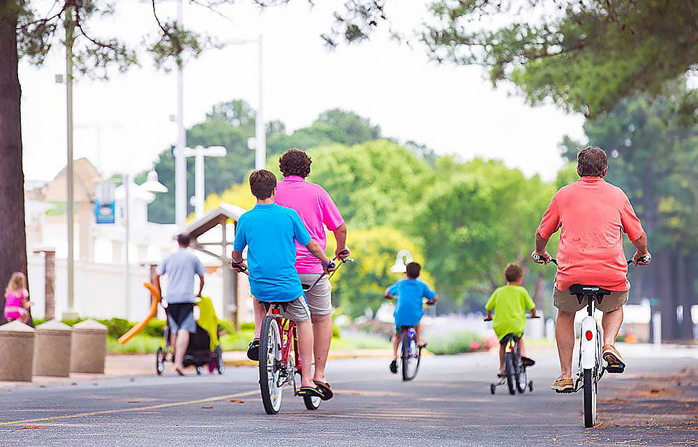 A group of adults and kids go for a bike rider under shady trees.