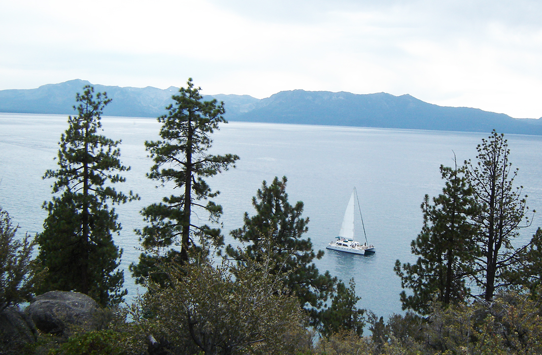 With trees in the foreground, a tri-hulled sailboat cruises along Lake Tahoe.