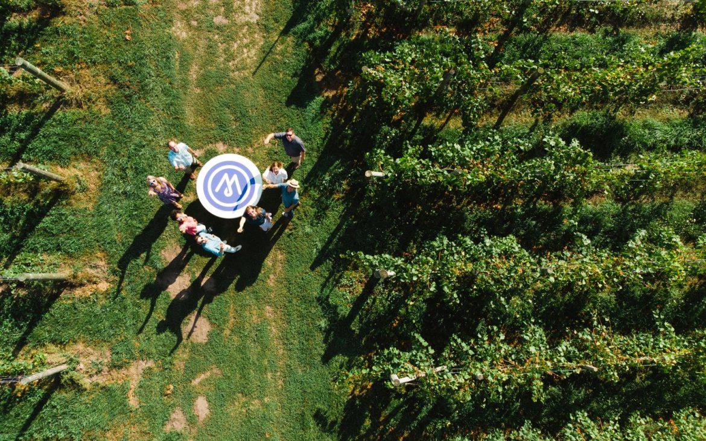 Ariel image of people looking up from vineyard vines
