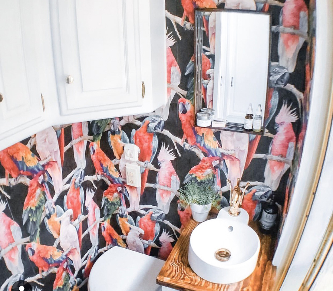Colorful parrot wallpaper covers the walls of a bathroom.