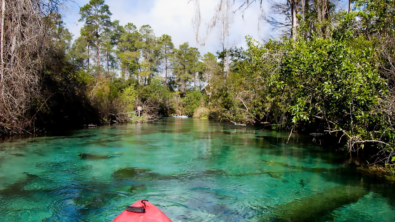 POV of a kayaker as they guide their red craft across clear springs.