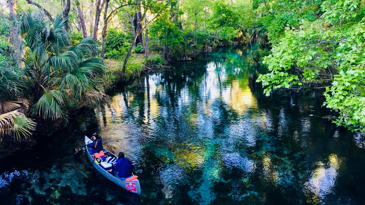 A two-person canoe navigates a narrow waterway fringed by tropical foliage.