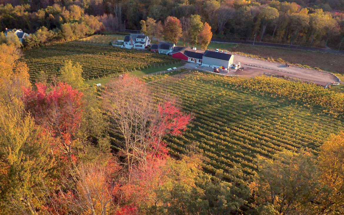 Aerial image of Connecticut vineyard and winery in fall