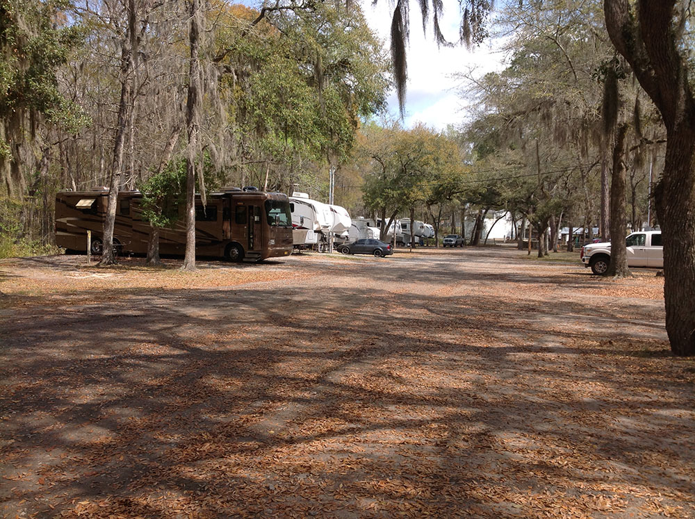 RVs parked in the shade in a rustic park setting.