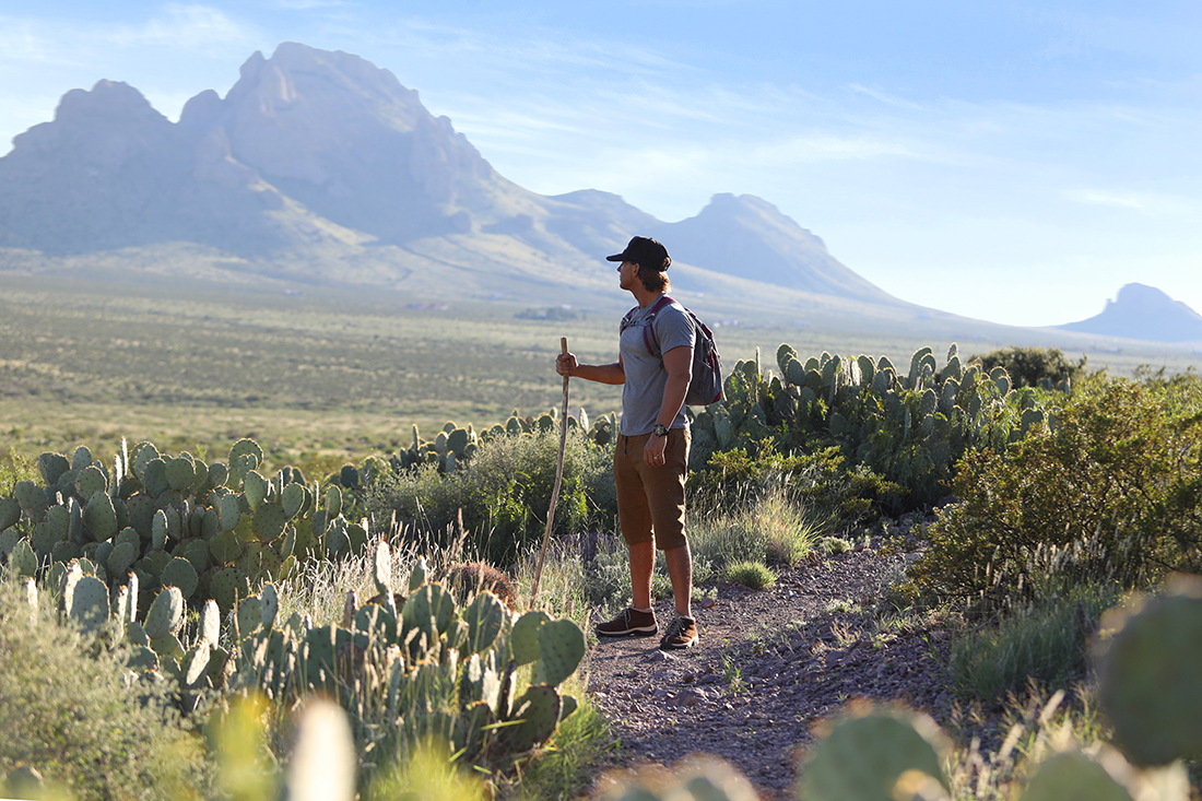 A hiker gazes out at a mountainous desert Southwest landscape with cactus and peaks in the background.
