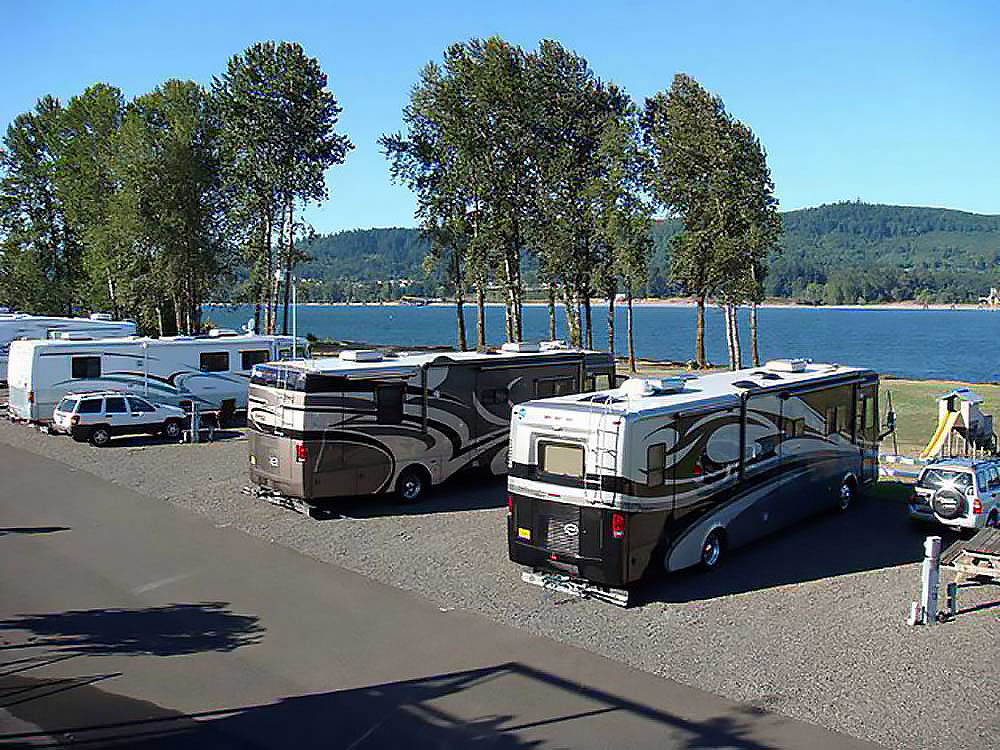 Motorhomes parked overlooking Columbia river with windbreak trees near bank.