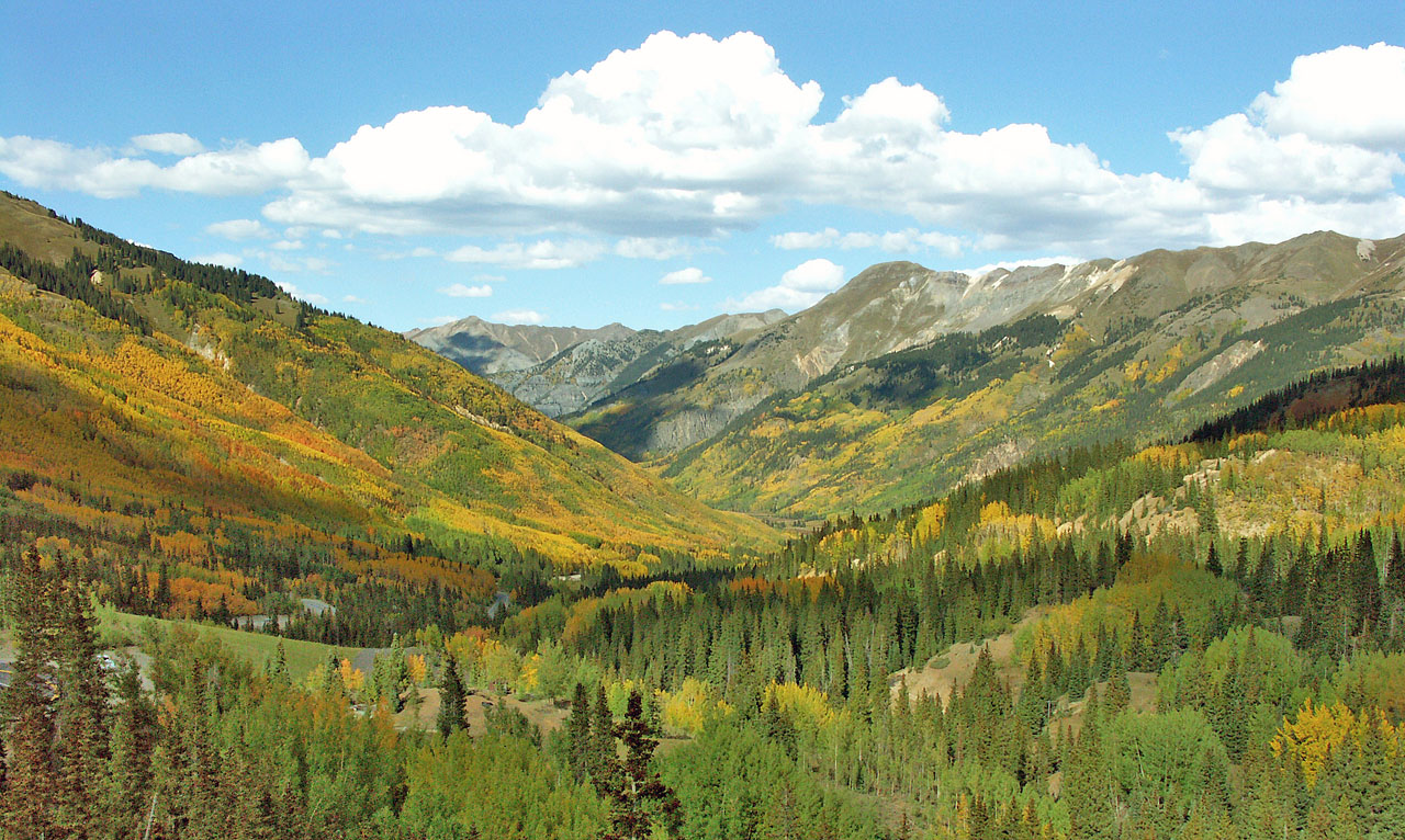 A colorful forest carpets the floor of a valley in Colorado as mountains rise in the distance.
