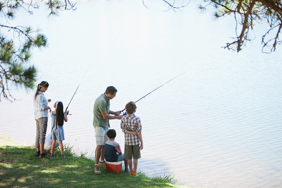 A family of four fish on a lakeside.