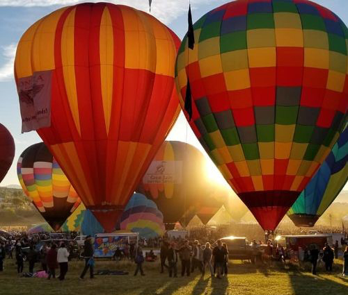 A tight cluster of hot-air balloons tethered to the ground during sunset.