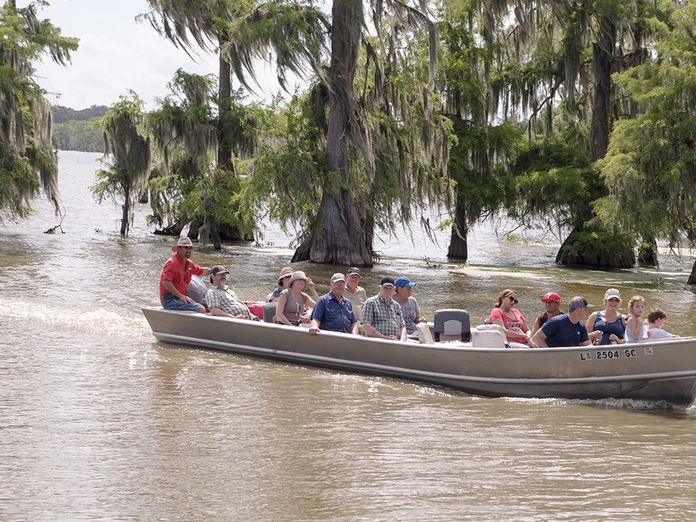 Sightseers ride a boat through wetlands with cypress trees growing in the water.