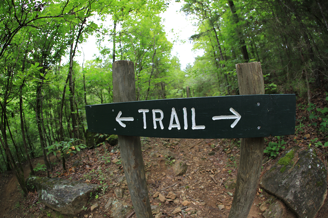 A trail sign points in both right and left directions.