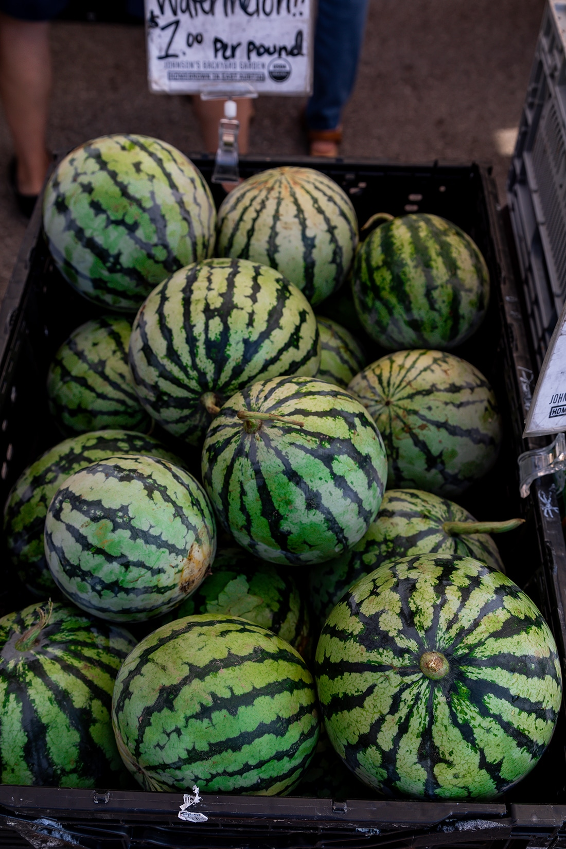 About 20 round melons stacked at a farmers market.