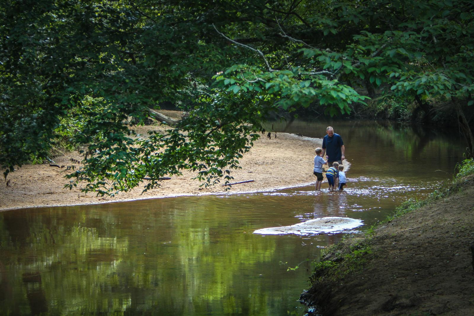 A man and three children play in a gentle creek.
