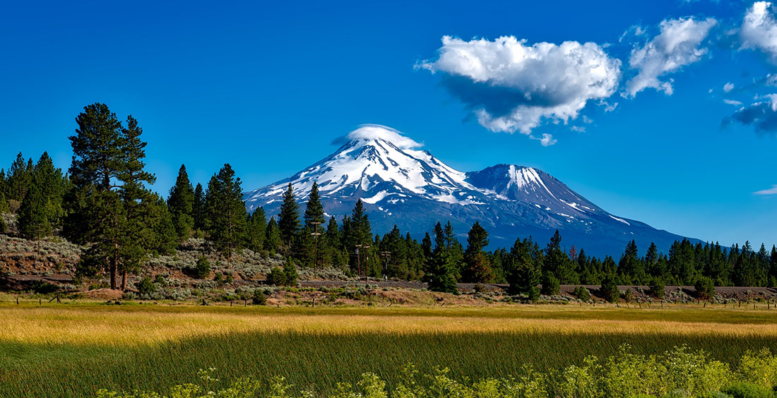 A snowcapped mountain peak looms in the background with a meadow in the foreground.
