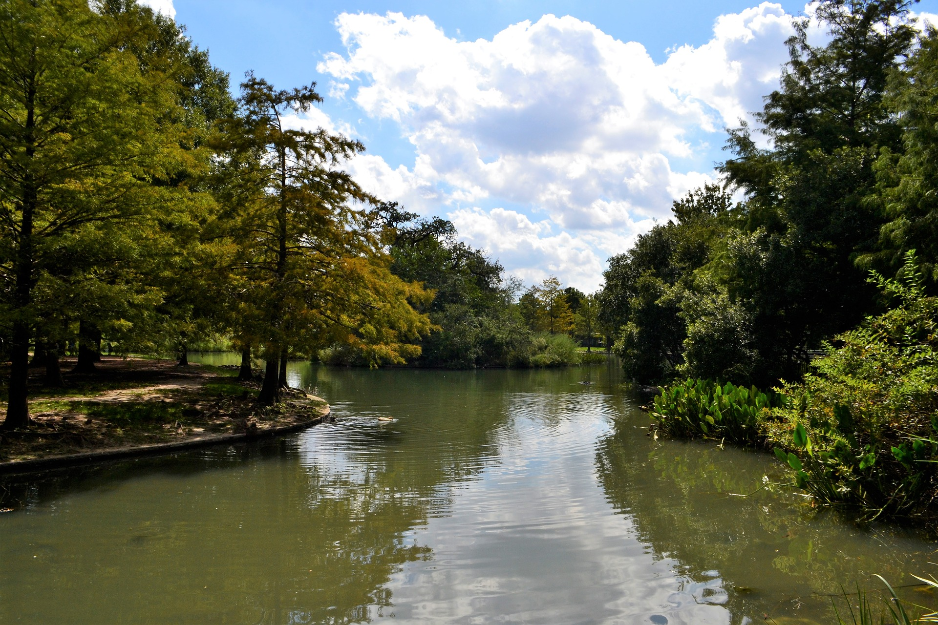 A waterway fringed with trees under a sunny sky with a few clouds.