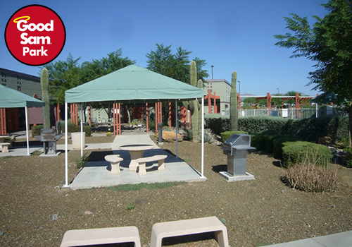 A picnic table under a canopy with cacti to the right.