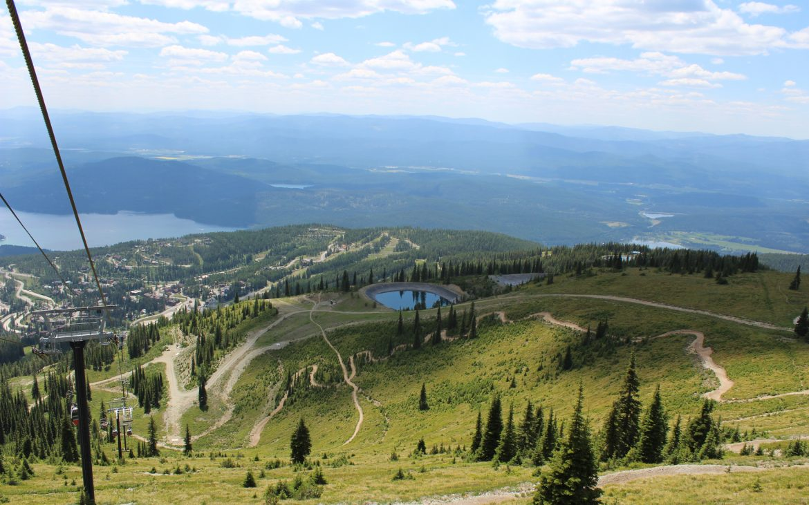View of mountain from top of ski slope with grass and pine trees, in Montana
