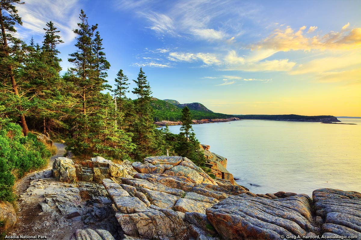 A forested, rocky coast gives way to a placid ocean cove