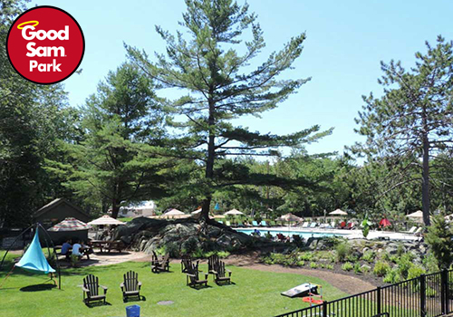 fall campground offers — Empty Adirondack chairs sit on a green lawn fringed with tall pine trees.