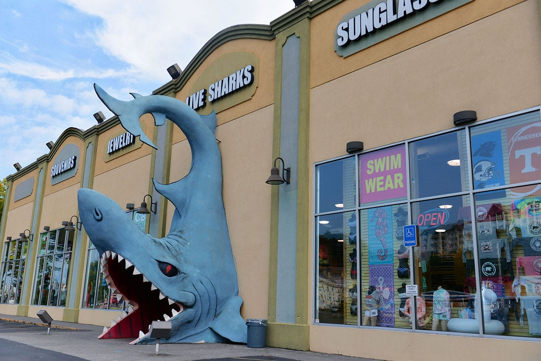 A big shark statue in front of a strip mall selling sunglasses and swimwear.