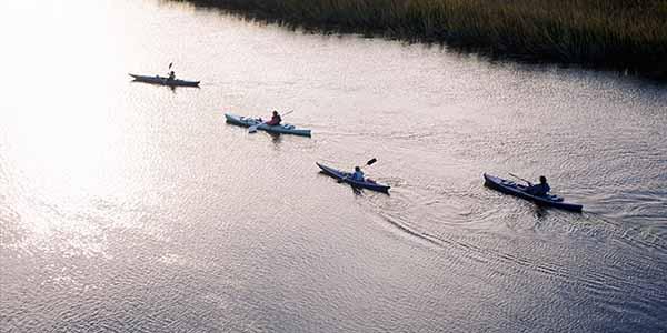 Four kayaks snake along a river.