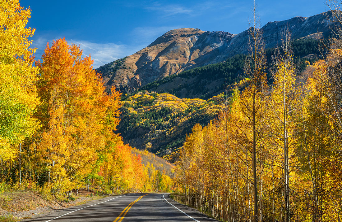 Gold-tinted trees flank a highway with mountains in the background.