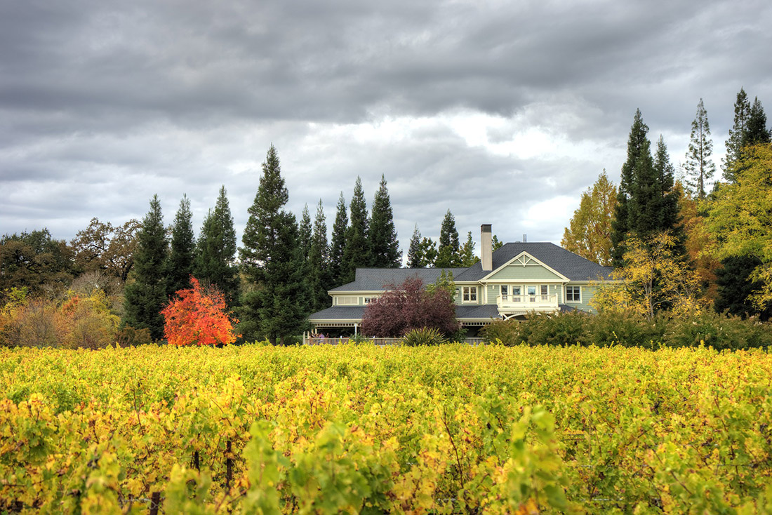 Golden grape vines (foreground) and and red and yellow trees frame an elegant house.