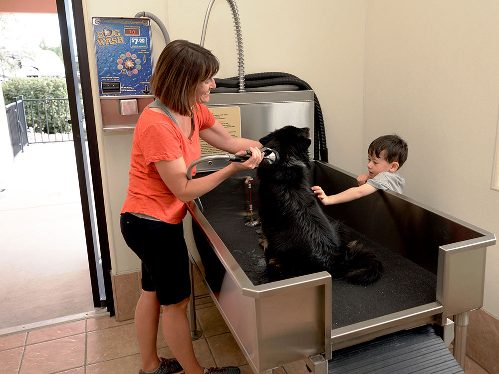 A woman washes a black labrador in a stainless steel basin with hose and nozzle while a small child helps her.