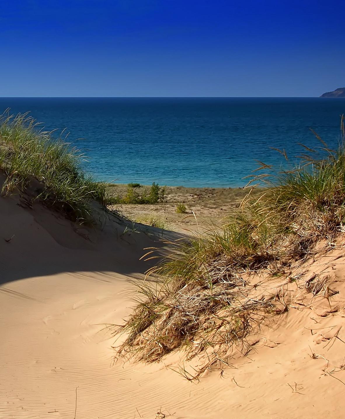 Sand dunes on a beach.