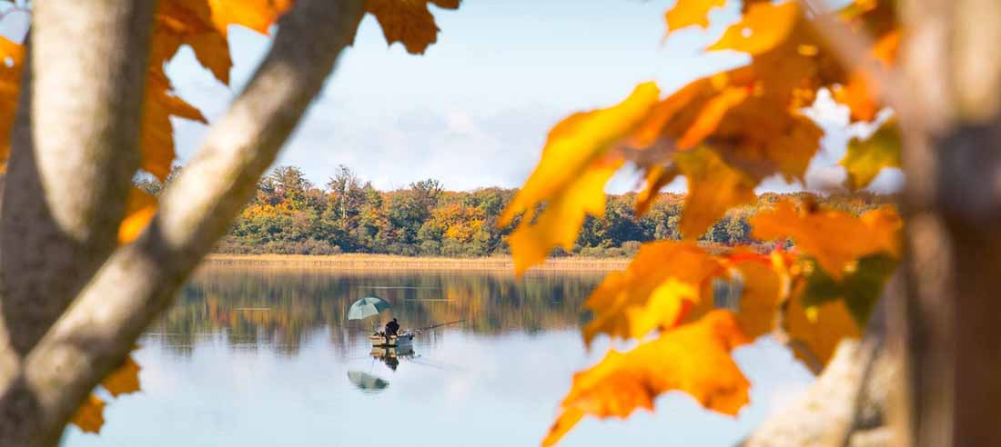 A glimpse of an angler in a small boat on a lake taken from between two branches with fall leaves.