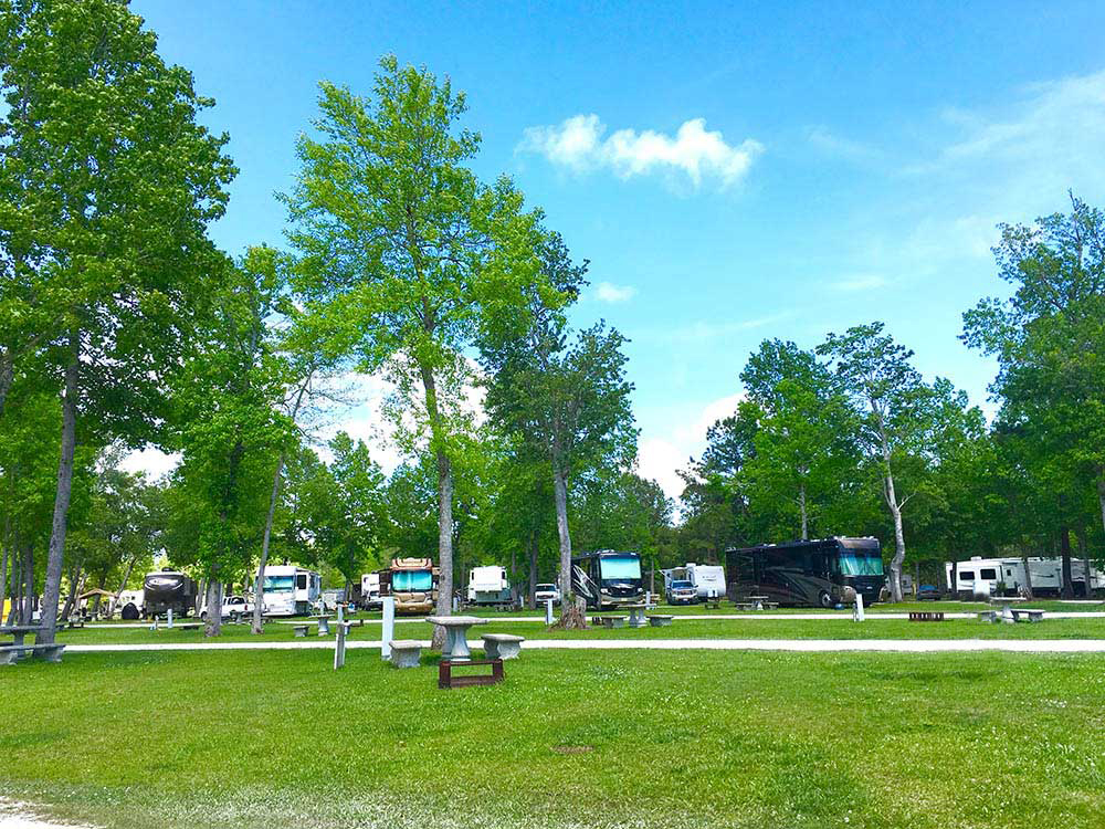 south brunswick islands north carolina — a grassy field with RVs right at the tree line.