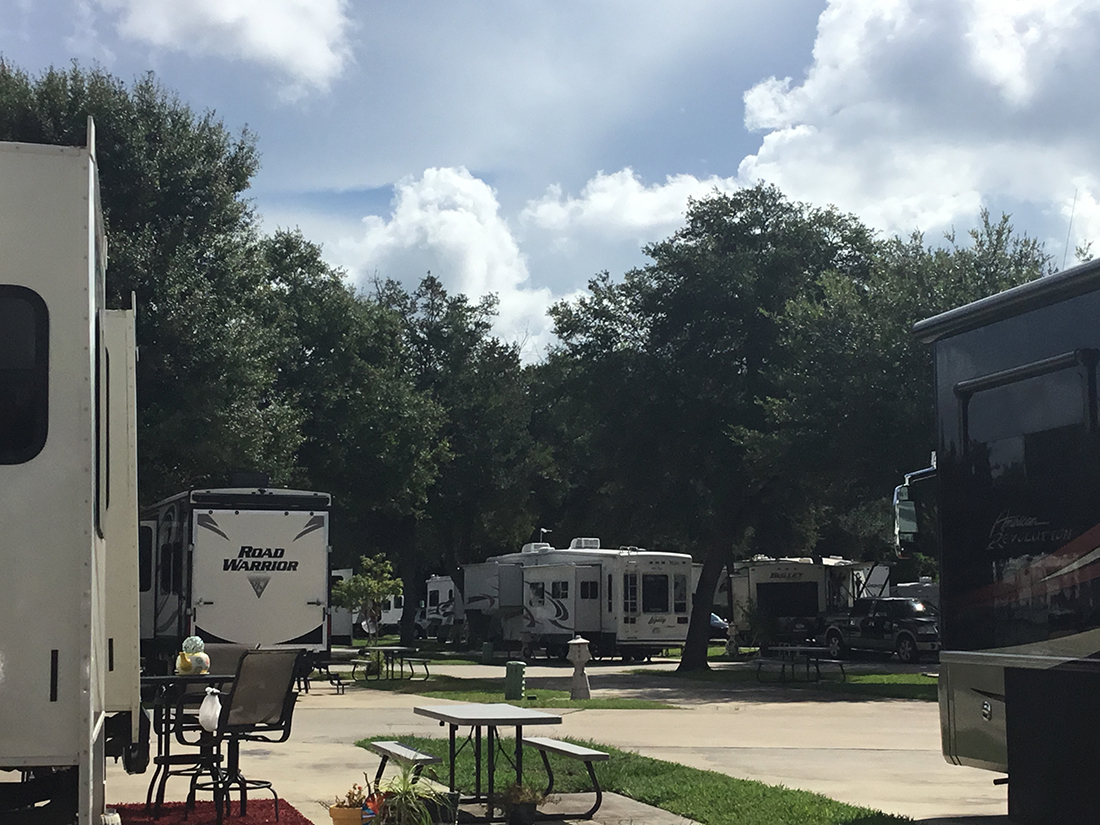 A Road Warrior trailer is among the RVs in a campground under dark-green shade trees.