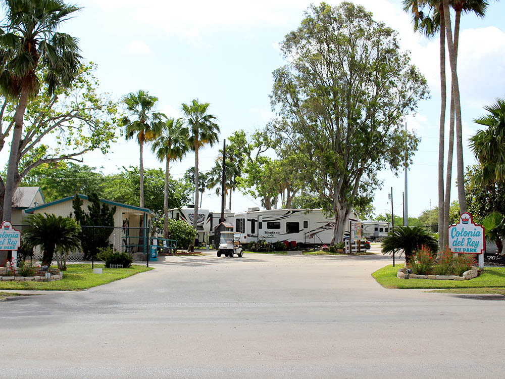 RVs under towering palm and maple trees; a small blue sign in the lower-right corner.