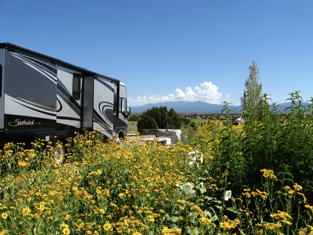 A field of flowers foregrounds a Southwind motorhome on the left side of the frame; hills and clouds form the horizon on the right.