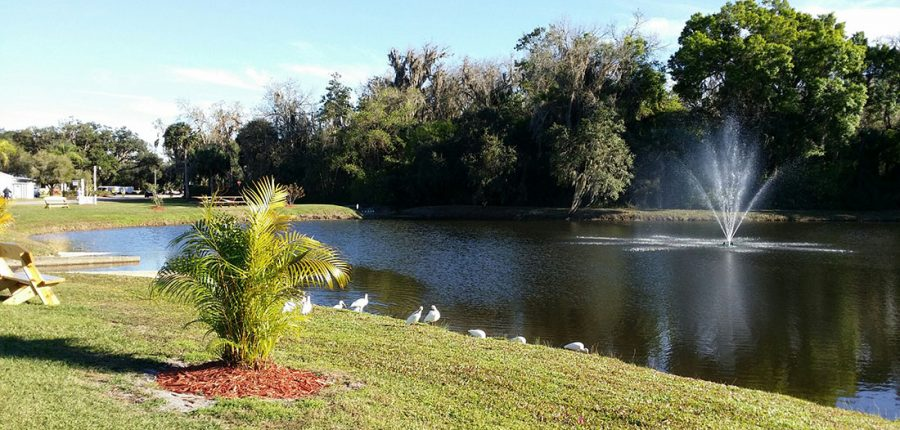A beautiful fountain in a lake at whisper creek rv resort in florida