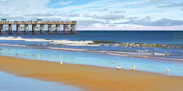 View of the pier with seagulls on the beach