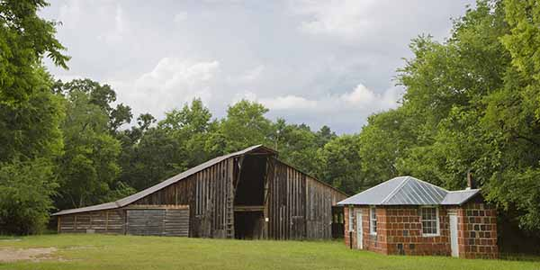 Barn next to a brick building, Andallusa Farm, Home of Flannery O'Connor - Baldwin County
