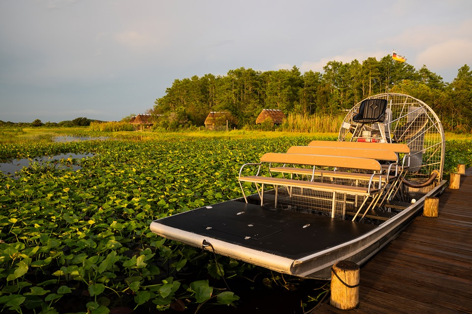 A flat-bottomed air boat moored to a dock in a swamp.