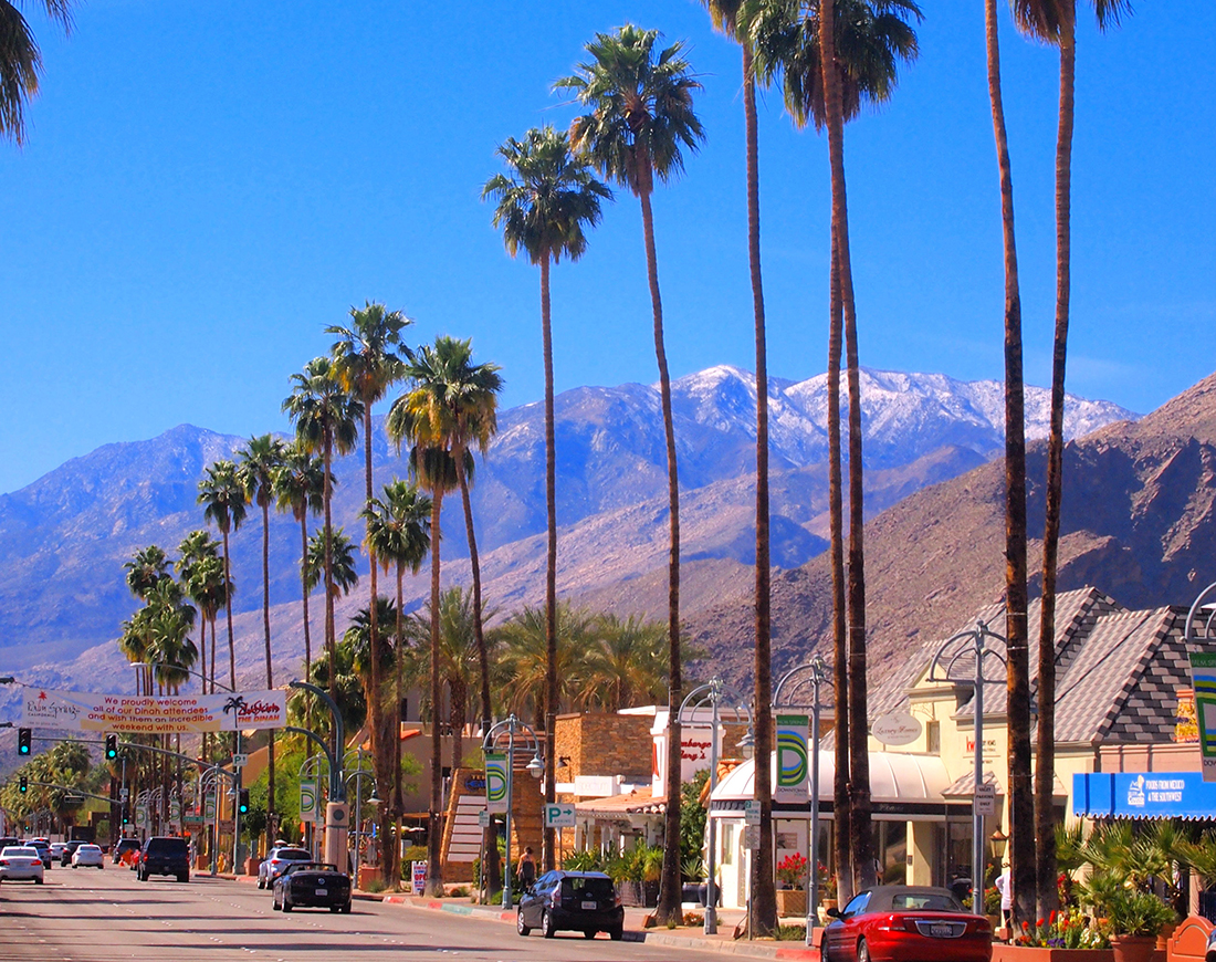 Boutiques and tall palm trees line a street in Palm Springs.