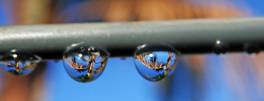 Droplets on a water line.