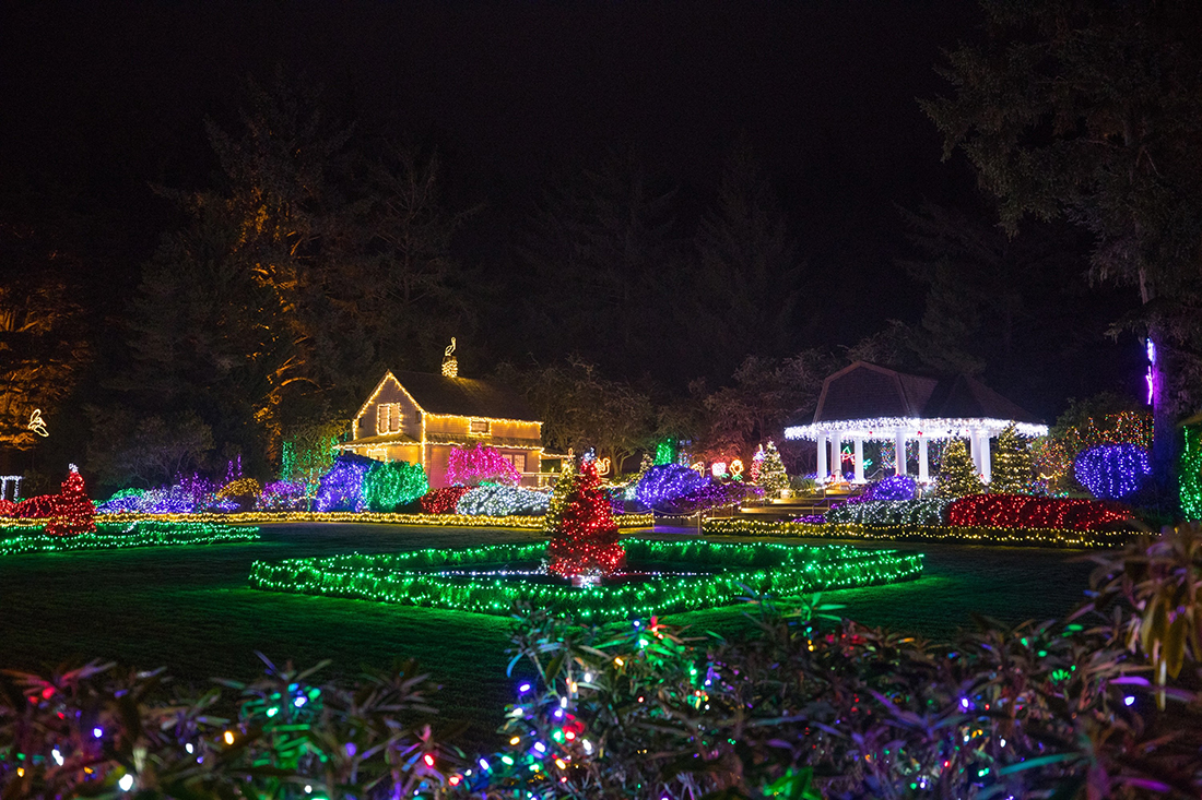 A Christmas Tree, house and pavilion lit up in the night.