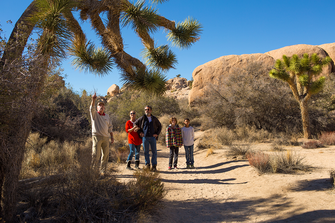 A group of adults and kids tour Joshua Tree National Park's rocks and namesake trees.